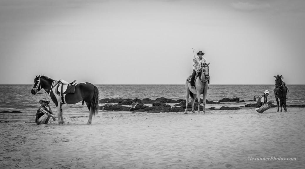Horses-Beach-Hua-Hin-Black-and-White-August-2014